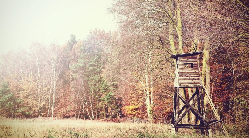 Retro filtered photo of a hunting pulpit in forest.