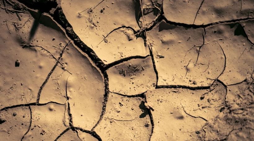 Äerderwäermung, Klima, Migratioun