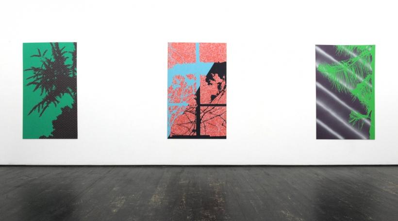 Grégory Durviaux, Vue d'exposition, A Spotlight at Night, Nosbaum Reding, Luxembourg, 2016