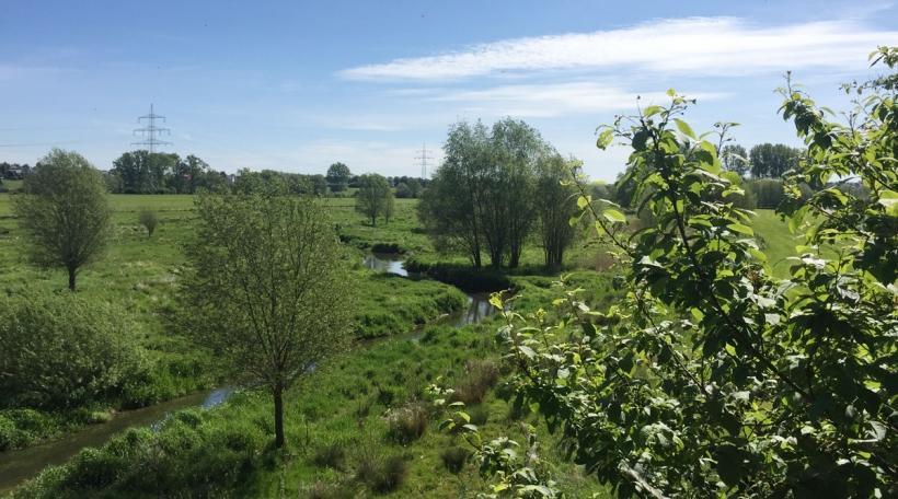 D'Naturschutzgebitt tëscht Schëffleng, dem Dumonts-Haff an der Lameschmillen