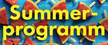 Summerprogramm 2017.png