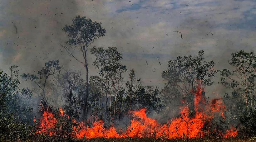 Bëschbränn am Amazonas