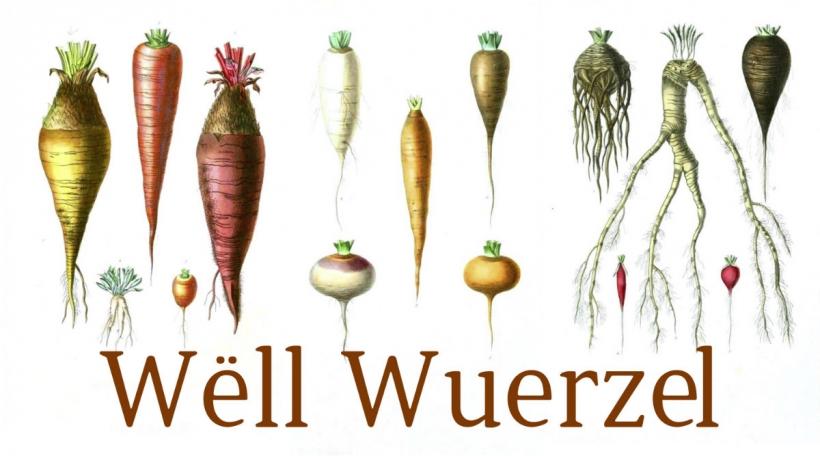 Wëll Wuerzel