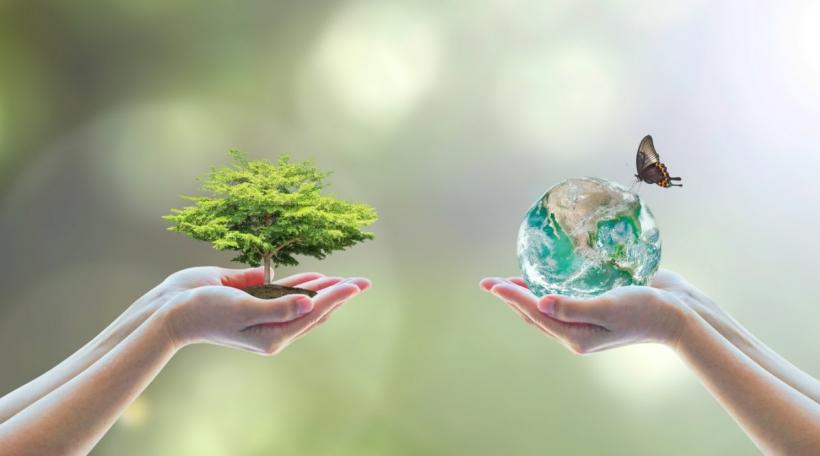 Biodiversitéit